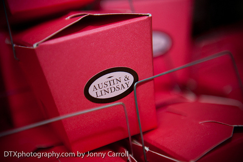 Lindsay and Austin Wedding